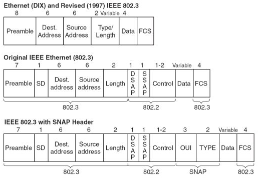 ethernet header