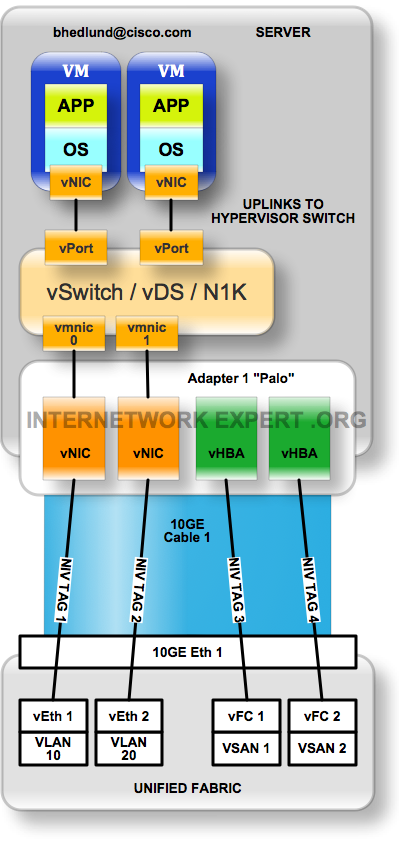 NIV hypervisor switch uplinks