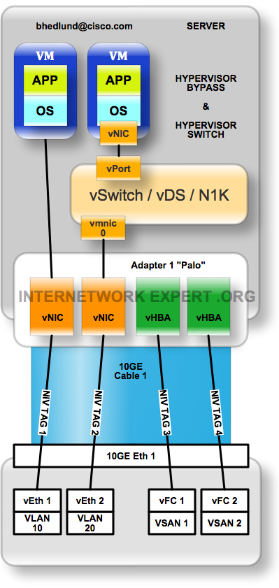 NIV hypervisor bypass and switching